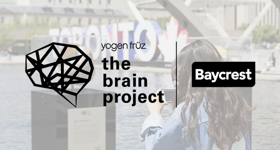 The Yogen Früz Brain Project